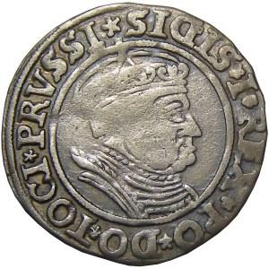 Zygmunt I Stary, grosz 1535, Toruń, PRVSSI