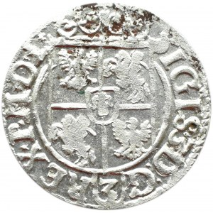 Zygmunt III Waza, półtorak 1620 herb Sas, Bydgoszcz