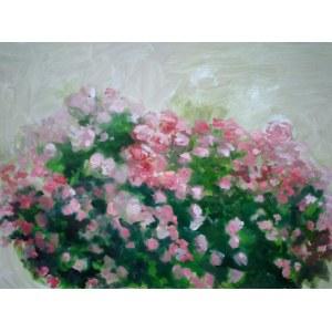 Dariusz Syrkowski,Kwiaty