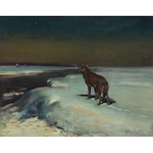 Wierusz-Kowalski Alfred, SAMOTNY WILK