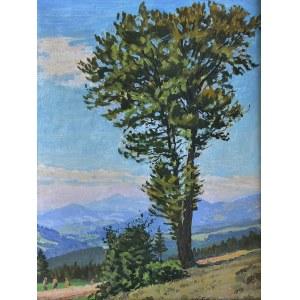 Jan Wałach (1884-1979), Pejzaż beskidzki z drzewem, 1957