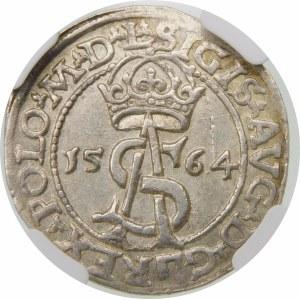 Zygmunt II August, Trojak 1564, Wilno – L/L