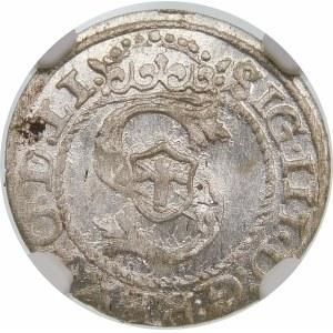 Zygmunt III Waza, Szeląg 1595, Ryga