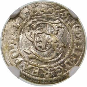 Zygmunt III Waza, Szeląg 1599/8, Ryga – przebitka daty