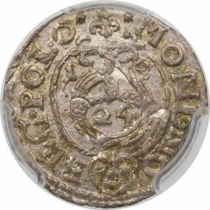 Zygmunt III Waza, Półtorak 1619, Bydgoszcz – Sas w tarczy owalnej