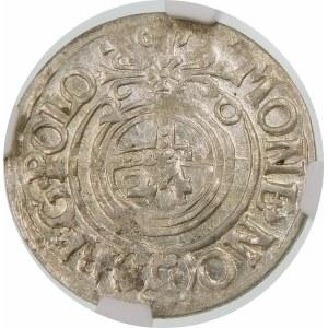 Zygmunt III Waza, Półtorak 1620, Bydgoszcz – Sas w tarczy owalnej