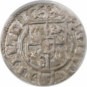 Zygmunt III Waza, Półtorak 1624, Bydgoszcz – Sas w tarczy owalnej