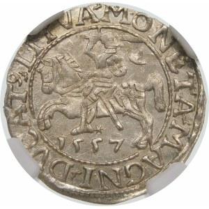 Zygmunt II August, Półgrosz 1557, Wilno – LI/LITVA