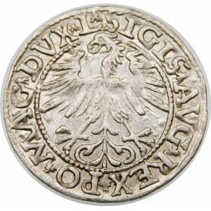 Zygmunt II August, Półgrosz 1563, Wilno – Duża Pogoń, Herb Topór – DVX L/LITV