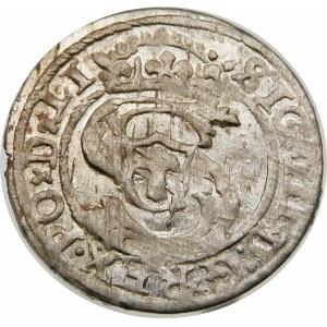 Zygmunt III Waza, Szeląg 1599, Ryga