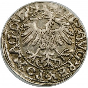 Zygmunt II August, Półgrosz 1558, Wilno – LI/LITVA