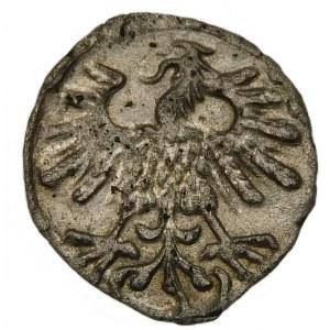 Zygmunt II August, Denar 1559, Wilno