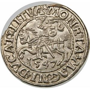 Zygmunt II August, Półgrosz 1547, Wilno – LI/LITVA