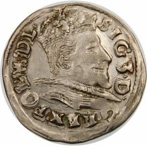 Zygmunt III Waza, Trojak 1596, Lublin – data przedzielona herbem Lewart