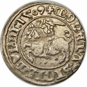 Zygmunt I Stary, Półgrosz 1509, Wilno – Pogoń bez pochwy – dwukropek