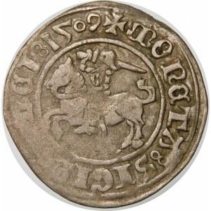 Zygmunt I Stary, Półgrosz 1509, Wilno – Pogoń z pochwą – odmiana