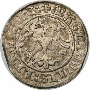 Zygmunt I Stary, Półgrosz 1509, Wilno – Pogoń bez pochwy – dwukropki