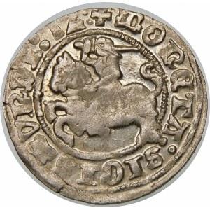 Zygmunt I Stary, Półgrosz 1512, Wilno – dwukropki