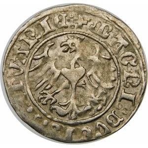 Zygmunt I Stary, Półgrosz 1513, Wilno – dwukropki