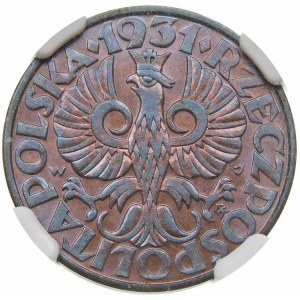 5 groszy 1931
