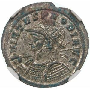Cesarstwo Rzymskie, Probus (276–282), antoninian 276-282, Rzym