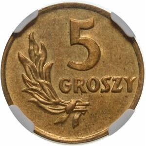 PRÓBA 5 groszy 1949 bez napisu próba - mosiądz