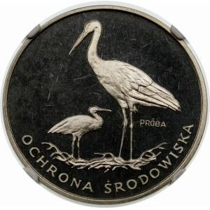 Próba 100 złotych 1982 Bociany - nikiel