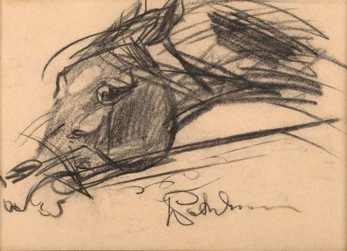 Jerzy Potrzebowski, Głowa konia