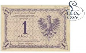 1 złoty 1919 - S.90 F - Kolekcja Lucow