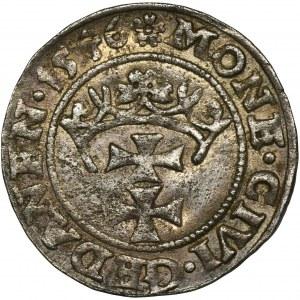 Zygmunt I Stary, Szeląg Gdańsk 1546