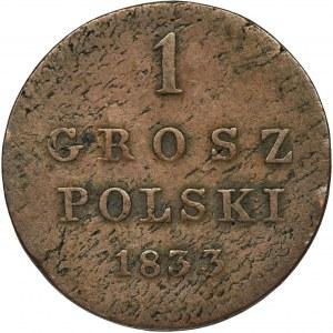 Królestwo Polskie, 1 grosz polski Warszawa 1833 KG