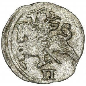 Zygmunt II August, Dwudenar Wilno 1566