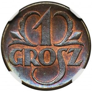1 grosz 1923 - NGC MS66 BN