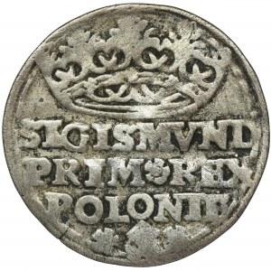 Zygmunt I Stary, Grosz Kraków 1528