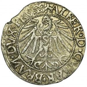 Prusy Książęce, Albrecht Hohenzollern, Grosz Królewiec 1544