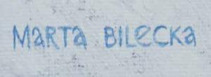 Marta BILECKA (ur. 1975), Frozen Lapland - Rose 3, 2016