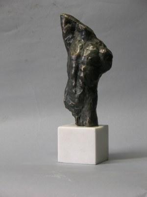 Waldemar Mazurek (ur. 1961), Tors, 2020