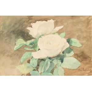Kazimierz Pochwalski (1855 Kraków - 1940 tamże), Białe różyczki