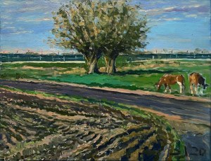 Sławomir J. Siciński, Dwa drzewa