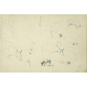 Włodzimierz Tetmajer (1861 - 1923), Szkice pasącej się krowy, 1907