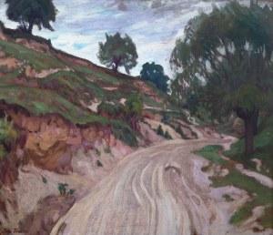 Iwan Trusz (1869 Wysocko - 1940 Lwów), Droga na Ukrainie