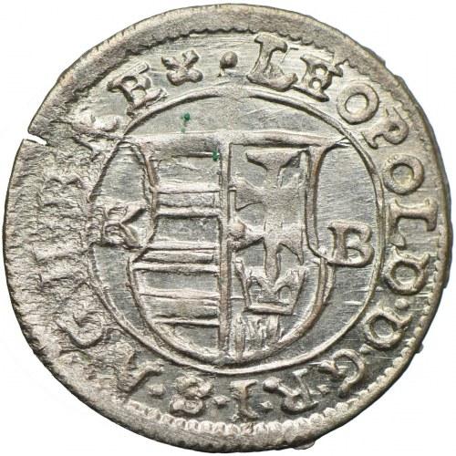 Węgry, Leopold I, denar 1675, Kremnica