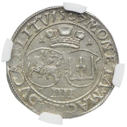Zygmunt II August, czworak 1567, Wilno, NGC MS62