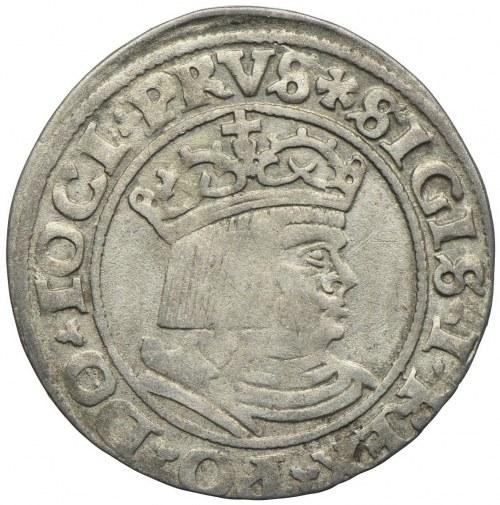 Zygmunt I Stary, grosz 1530, Toruń