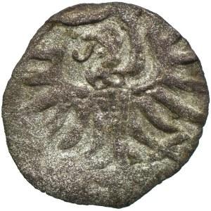 Zygmunt II August, denar 1557?, Elbląg