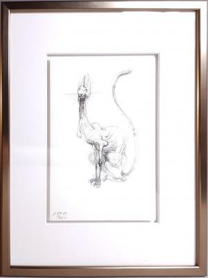 Robert Dyrcz, Kot I (15 x 21 cm)