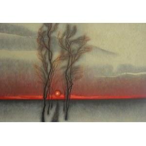 Dawid Zdobylak (Ur. 1993), Aleja drzew, zachód słońca2020