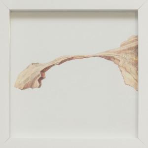 Michał Smandek, The Best Sculpture. Landscape Arch, 2011