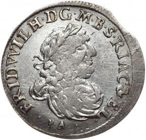Prusy Księstwo, Fryderyk Wilhelm, szóstak 1686, Królewiec, mniejsze popiersie