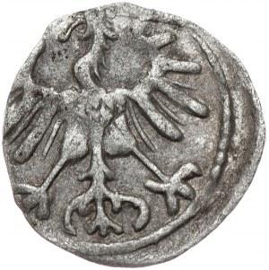Zygmunt II August, denar 1555, Wilno